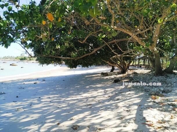 tempat teduh di Pantai Bagoes