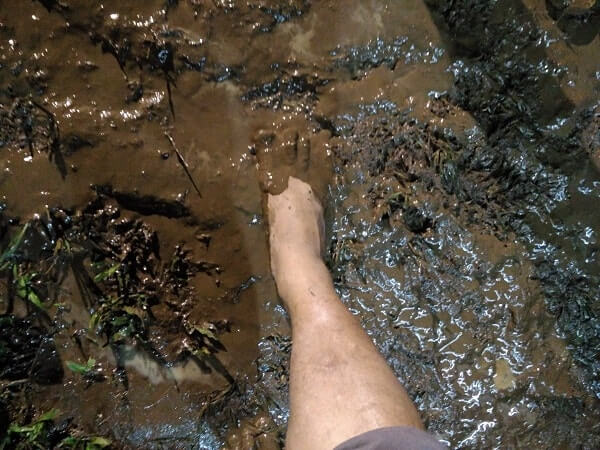 jalan di atas becekan lumpur tanggamus expo 2017