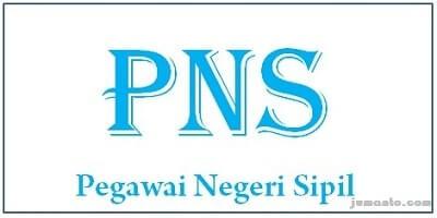 menjadi profesi PNS